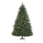 9' Noble Classic Realistic Tree, Full, Pre Lit, Cl