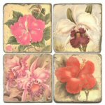 Tropical Flower II Drink Coasters - Set of 4